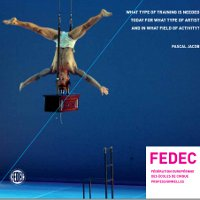 The Circus Artist Today: Analysis of the Key Competencies