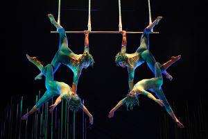 Cirque du Soleil: Varekai | Photo: Belinda Pratten